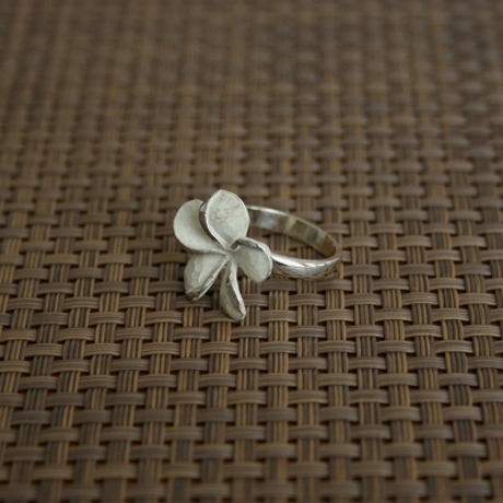 Product_prumeria_rings3