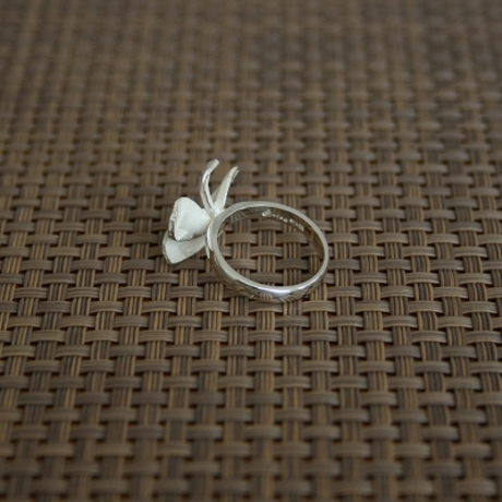 Product_prumeria_rings2